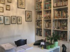 Independent hoise with large private garden for sale in Alassio - 15